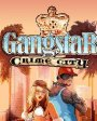 Gangstar:Crime city